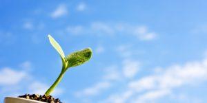 人の成長に関するブログをはじめました